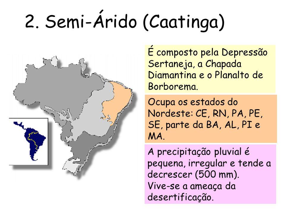 2. Semi-Árido (Caatinga)