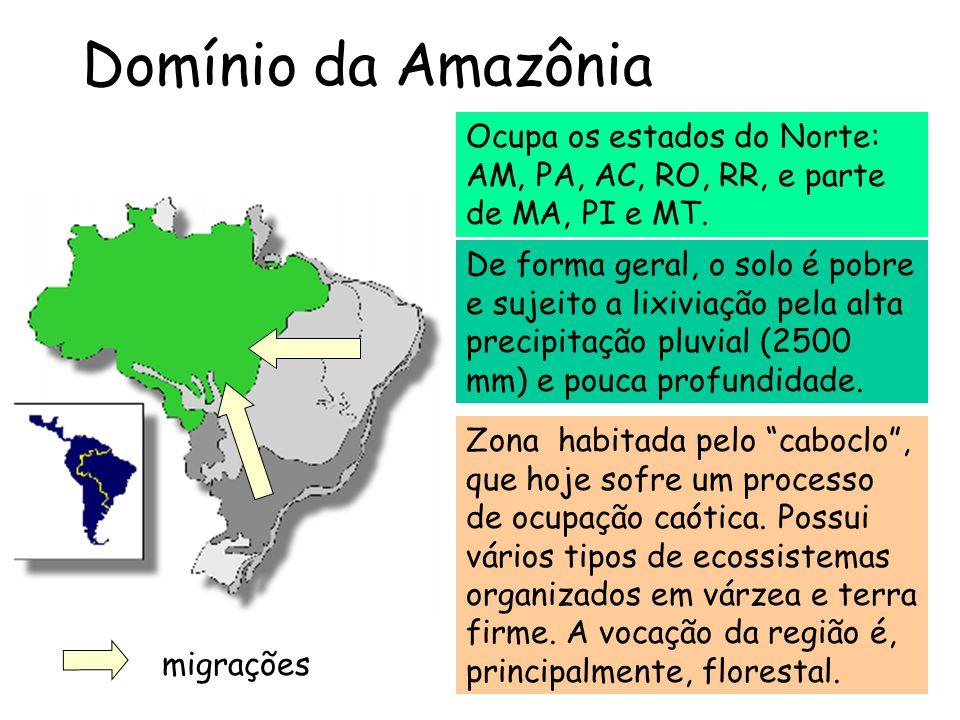 Domínio da Amazônia Ocupa os estados do Norte: AM, PA, AC, RO, RR, e parte de MA, PI e MT.