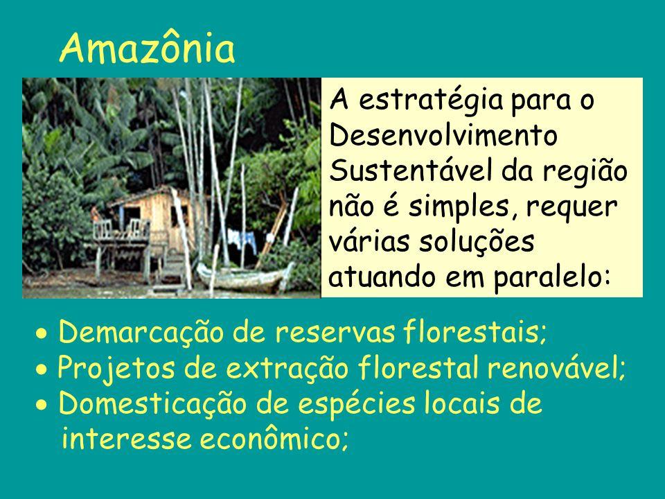 Amazônia A estratégia para o Desenvolvimento Sustentável da região não é simples, requer várias soluções atuando em paralelo: