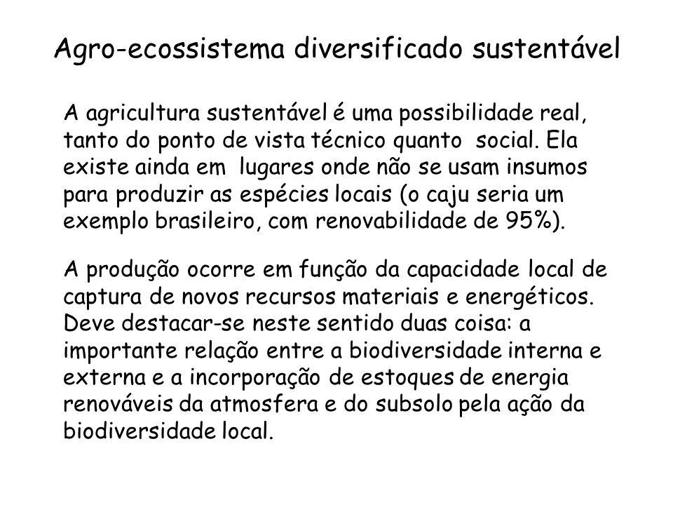 Agro-ecossistema diversificado sustentável