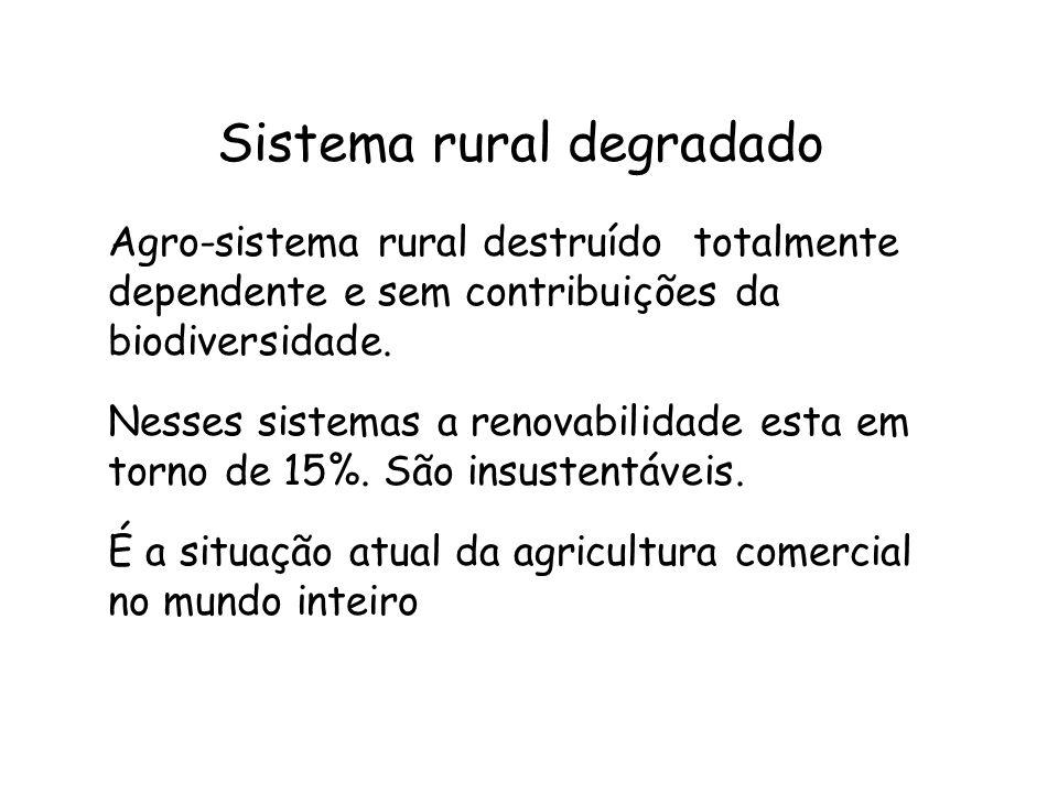 Sistema rural degradado