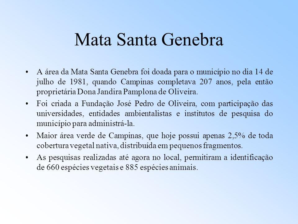 Mata Santa Genebra