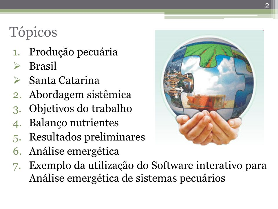 Tópicos Produção pecuária Brasil Santa Catarina Abordagem sistêmica