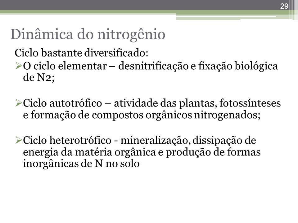 Dinâmica do nitrogênio