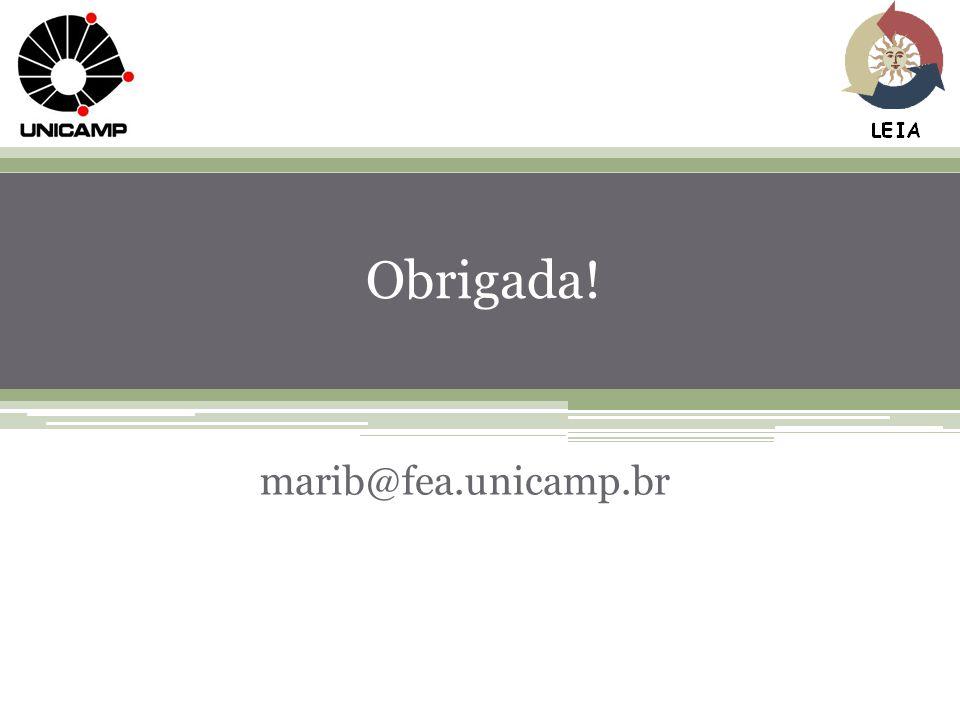 Obrigada! marib@fea.unicamp.br
