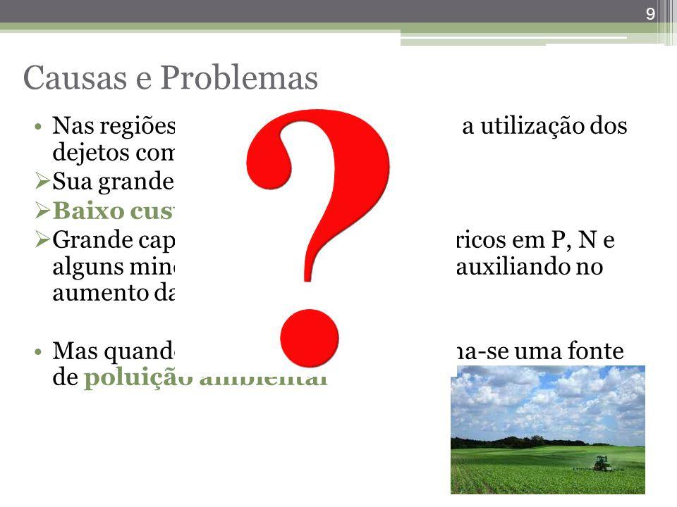 Causas e Problemas Nas regiões de suinocultura é comum a utilização dos dejetos como adubo orgânico devido: