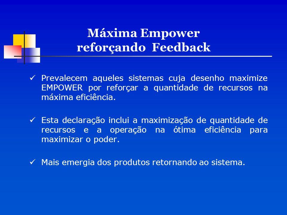 Máxima Empower reforçando Feedback
