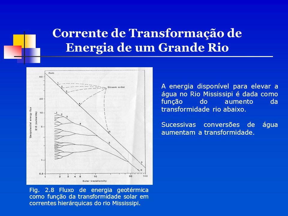 Corrente de Transformação de Energia de um Grande Rio