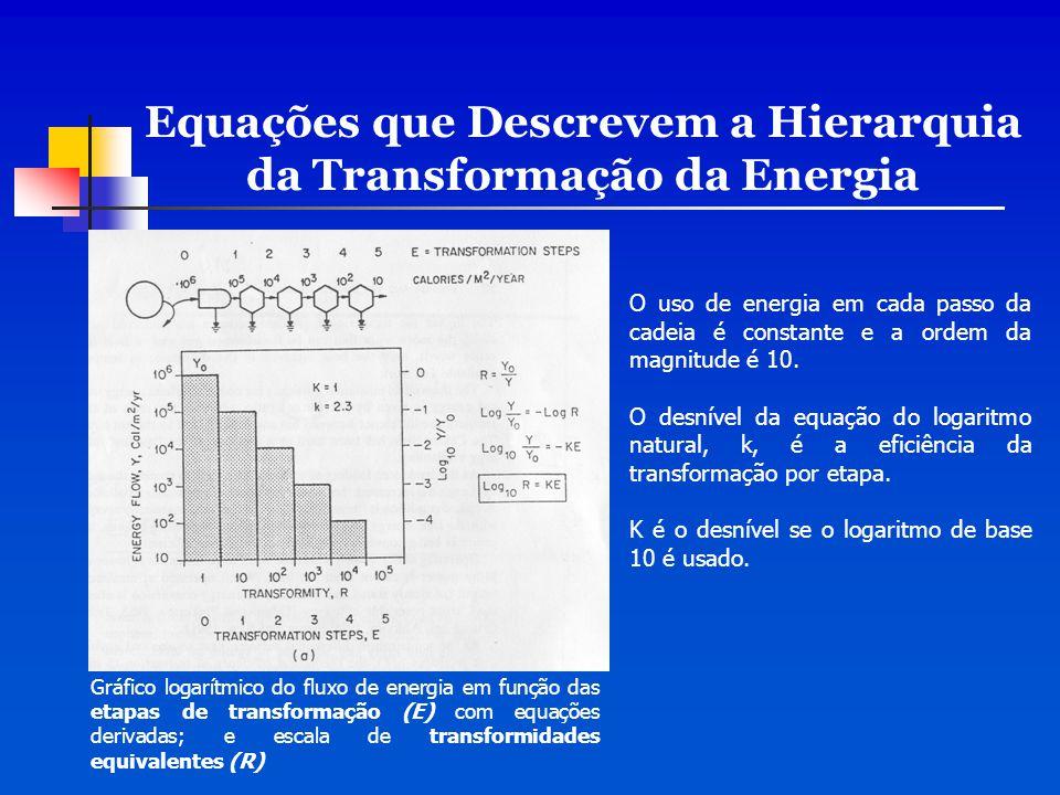 Equações que Descrevem a Hierarquia da Transformação da Energia