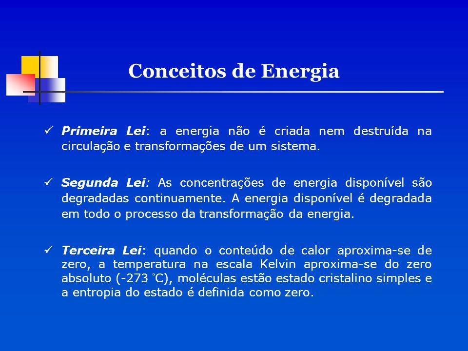 Conceitos de Energia Primeira Lei: a energia não é criada nem destruída na circulação e transformações de um sistema.
