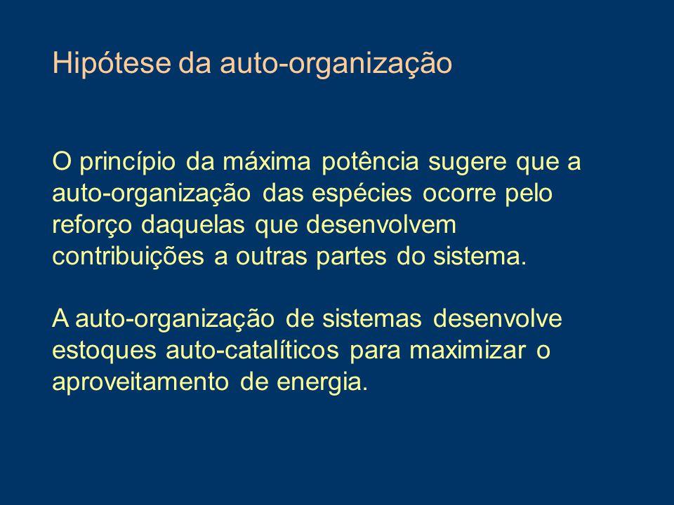 Hipótese da auto-organização