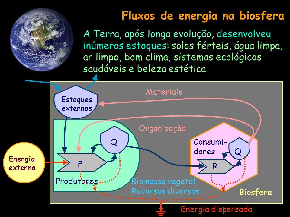 Fluxos de energia na biosfera