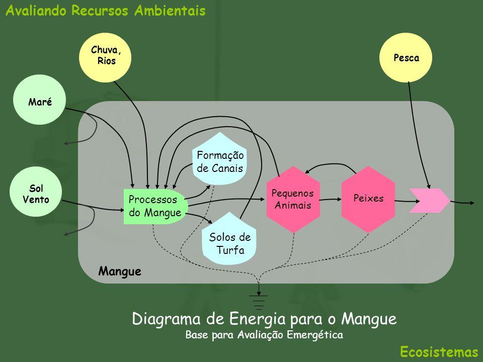Diagrama de Energia para o Mangue