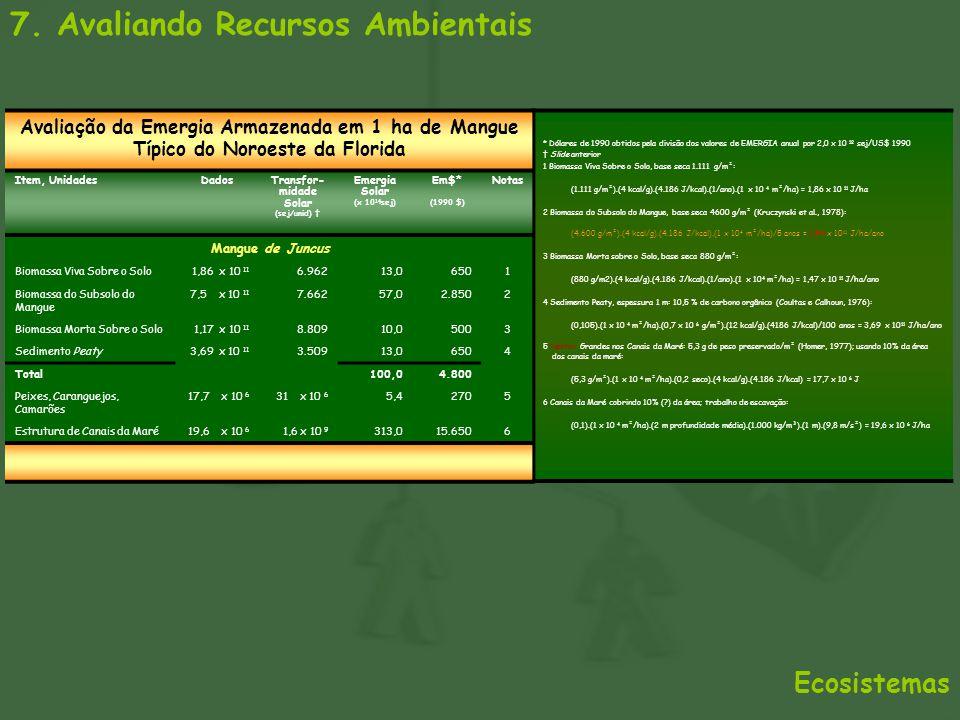 Transfor-midade Solar