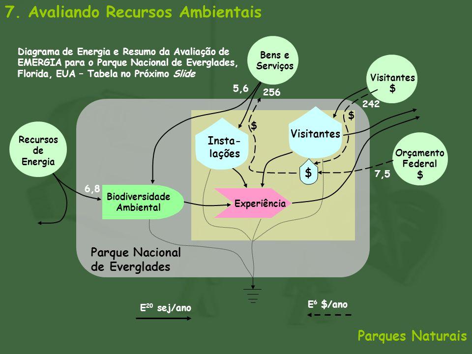 Biodiversidade Ambiental