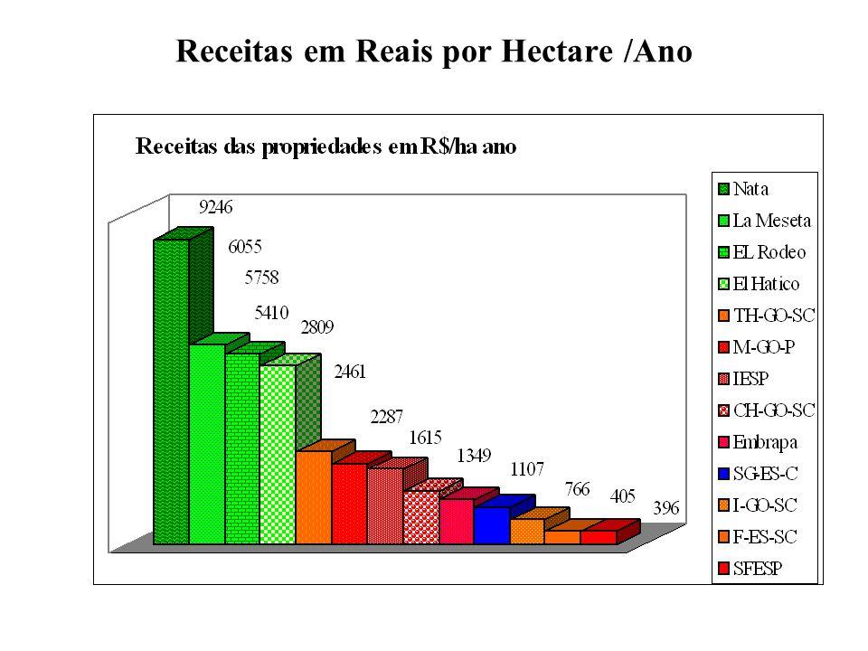 Receitas em Reais por Hectare /Ano
