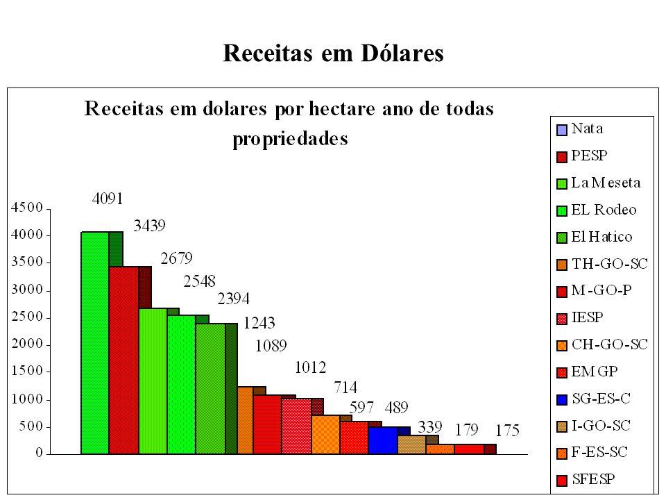 Receitas em Dólares