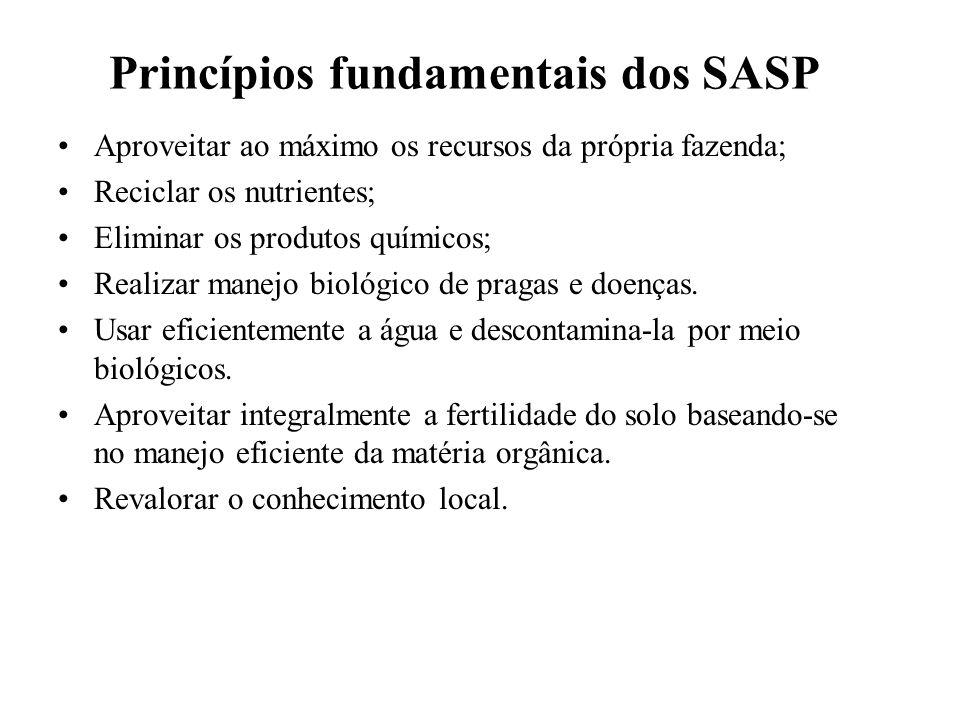 Princípios fundamentais dos SASP