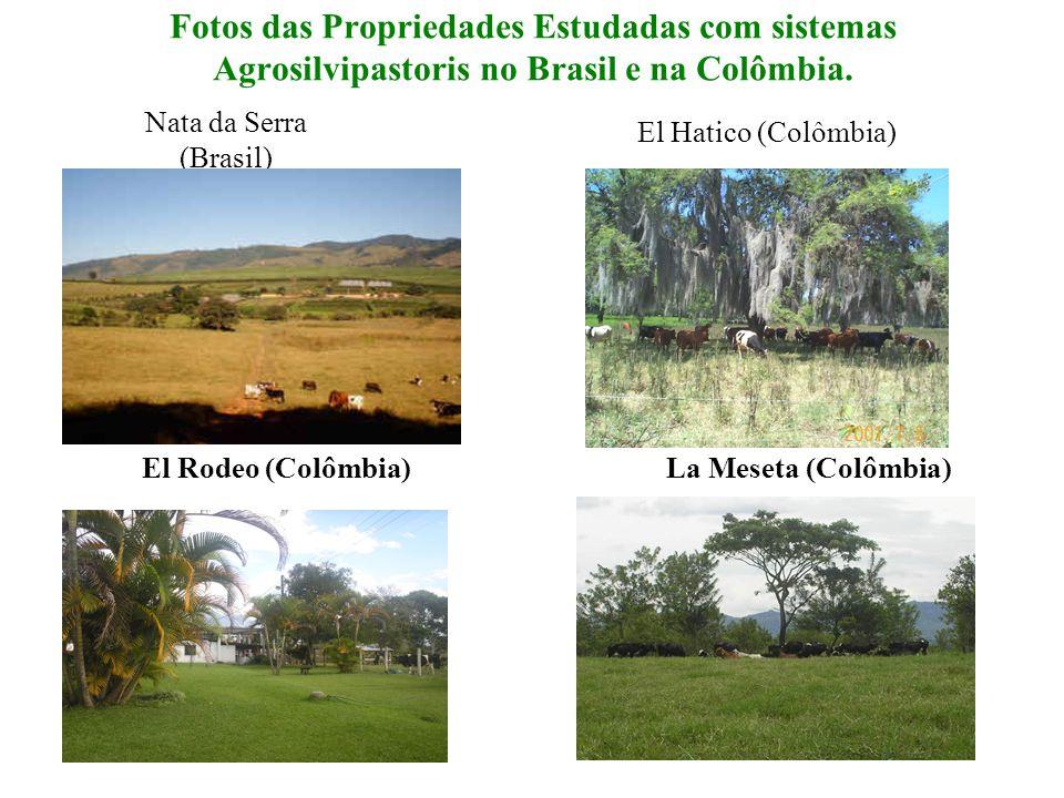 Fotos das Propriedades Estudadas com sistemas Agrosilvipastoris no Brasil e na Colômbia.