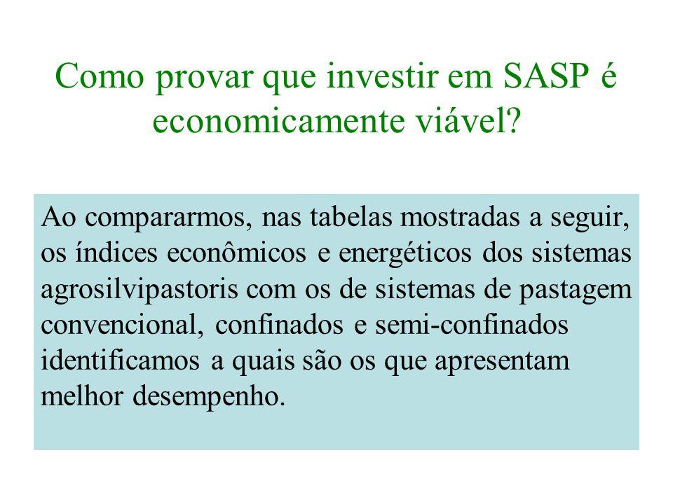 Como provar que investir em SASP é economicamente viável