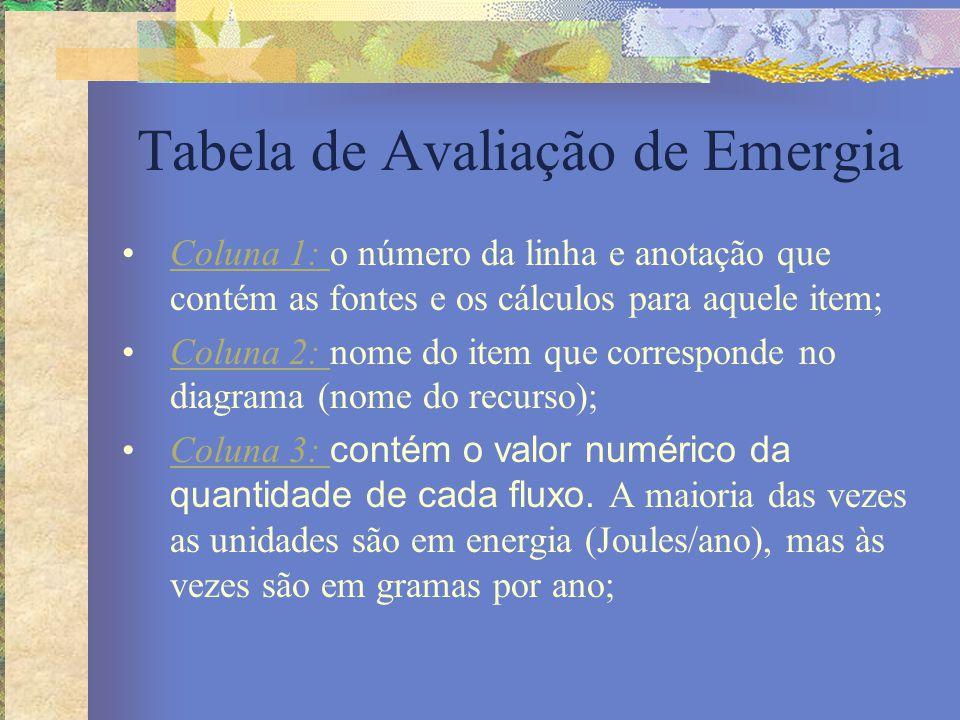 Tabela de Avaliação de Emergia