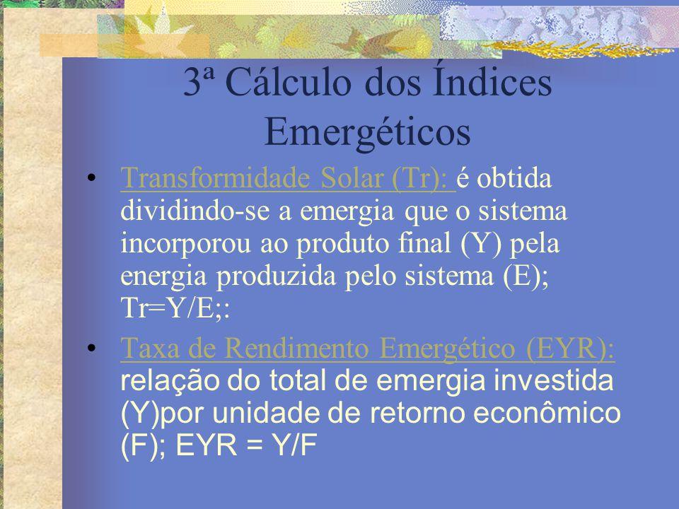3ª Cálculo dos Índices Emergéticos