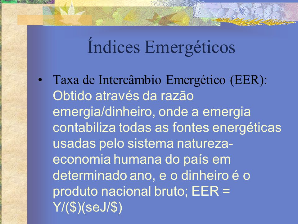 Índices Emergéticos