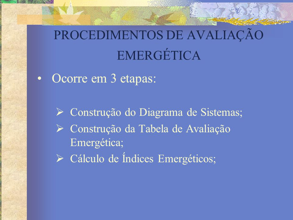 PROCEDIMENTOS DE AVALIAÇÃO EMERGÉTICA