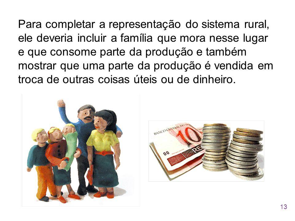Para completar a representação do sistema rural, ele deveria incluir a família que mora nesse lugar e que consome parte da produção e também mostrar que uma parte da produção é vendida em troca de outras coisas úteis ou de dinheiro.