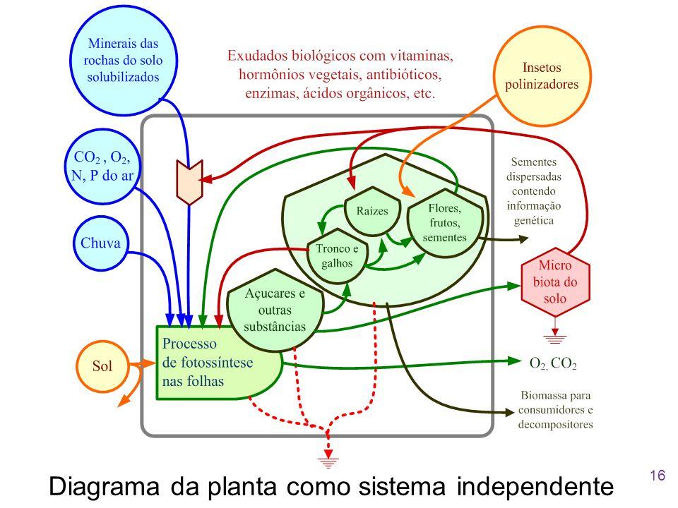 Diagrama da planta como sistema independente