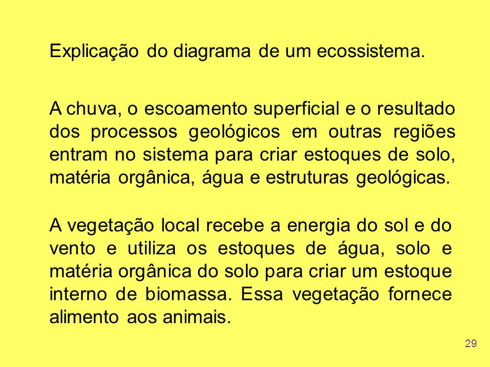 Explicação do diagrama de um ecossistema.