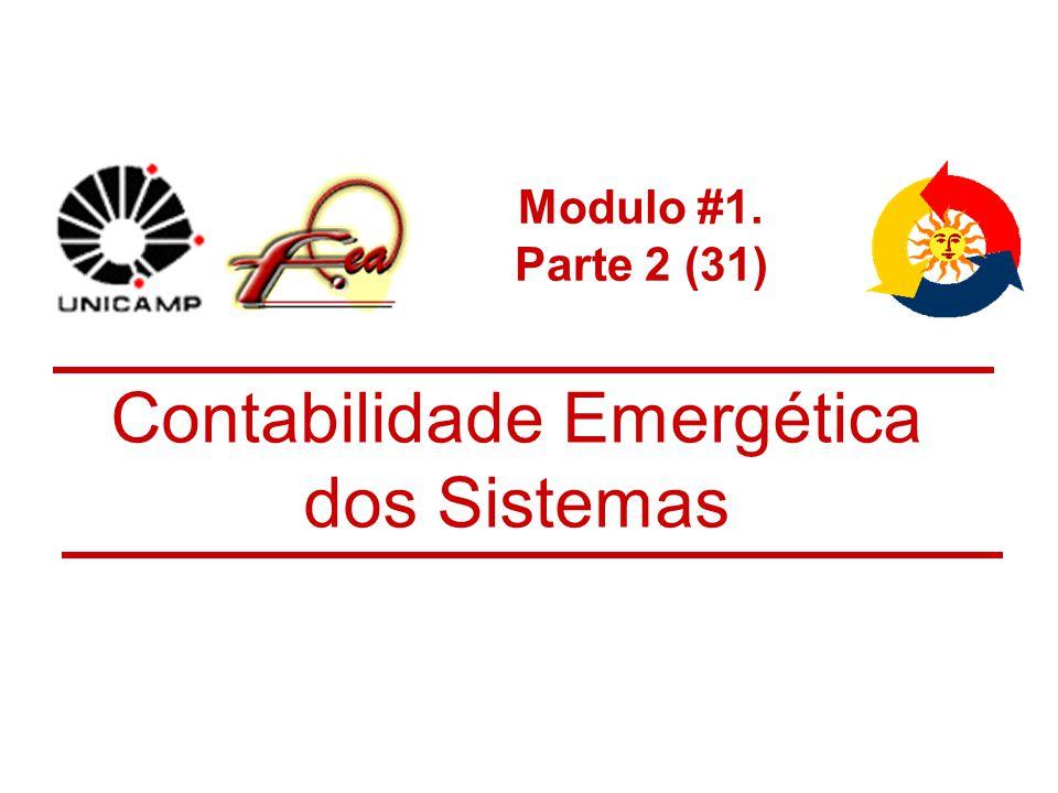 Contabilidade Emergética dos Sistemas