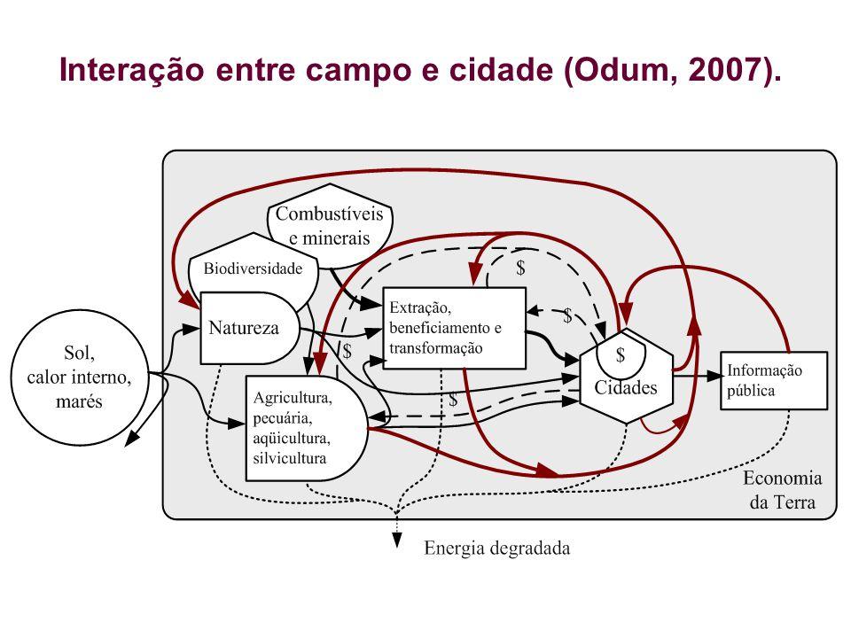 Interação entre campo e cidade (Odum, 2007).