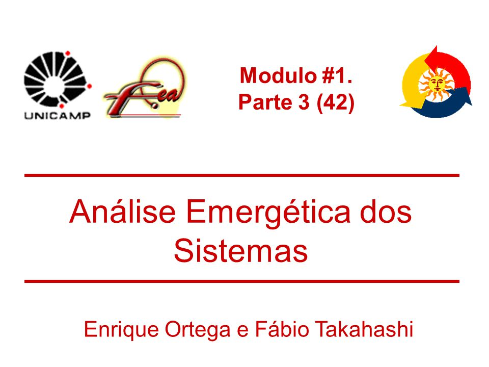 Análise Emergética dos Sistemas