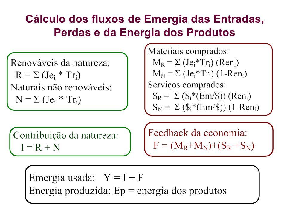 Cálculo dos fluxos de Emergia das Entradas, Perdas e da Energia dos Produtos