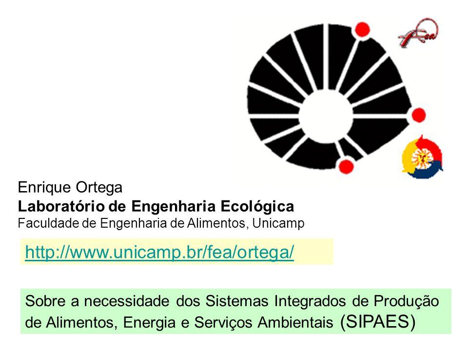 http://www.unicamp.br/fea/ortega/ Enrique Ortega