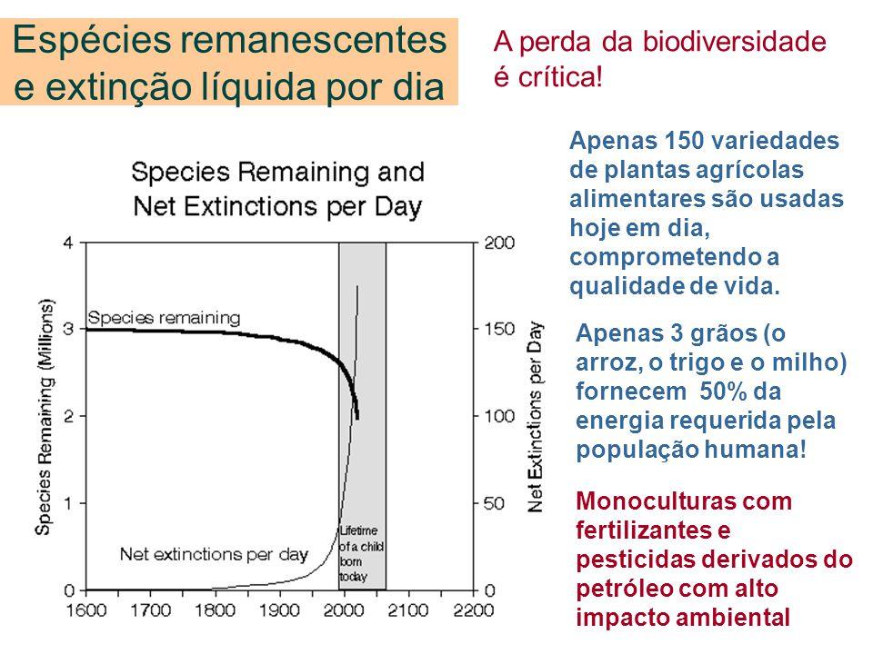 Espécies remanescentes e extinção líquida por dia
