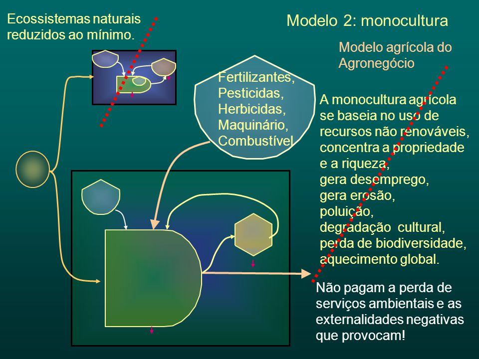 Modelo 2: monocultura Ecossistemas naturais reduzidos ao mínimo.
