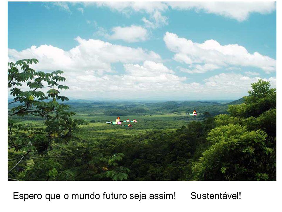 Espero que o mundo futuro seja assim!