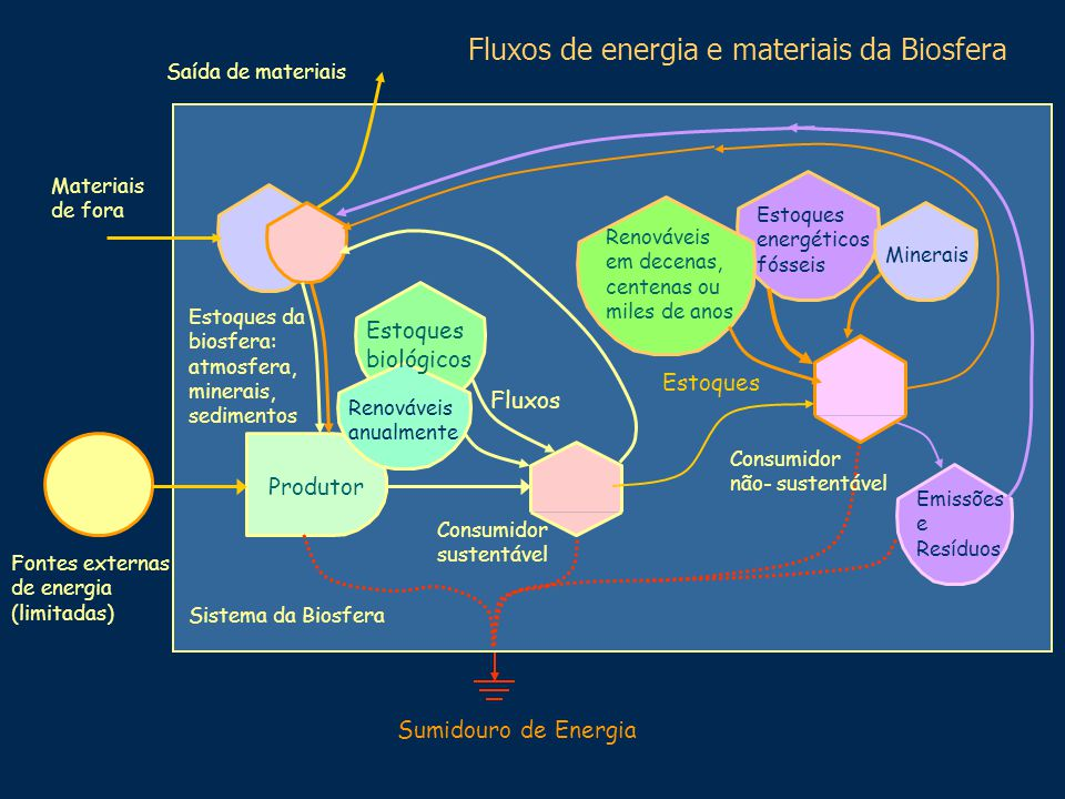 Fluxos de energia e materiais da Biosfera