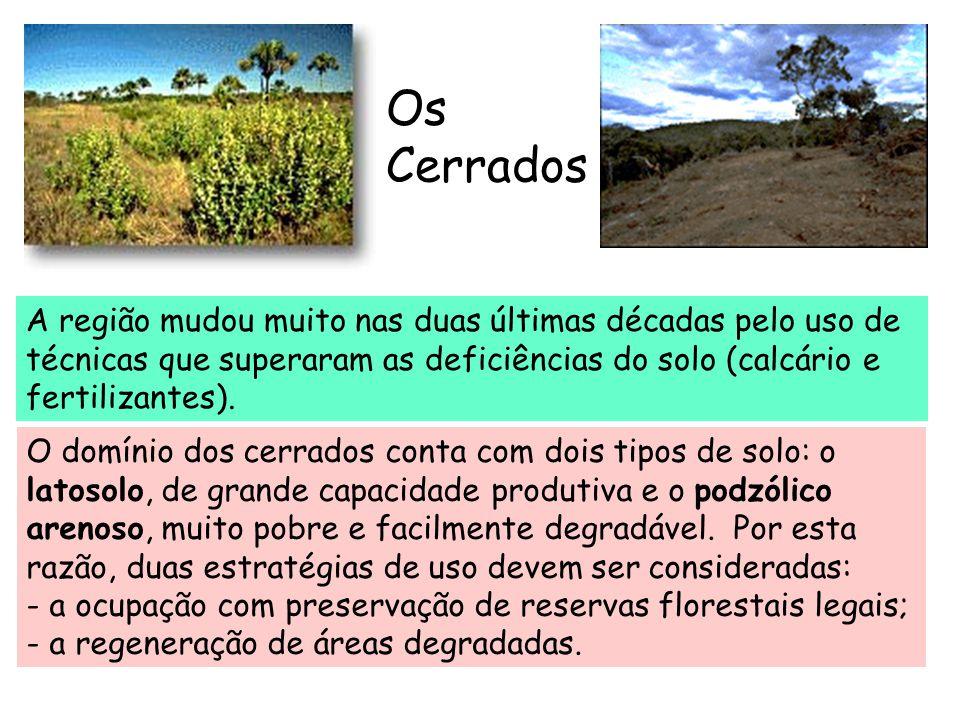 Os Cerrados A região mudou muito nas duas últimas décadas pelo uso de técnicas que superaram as deficiências do solo (calcário e fertilizantes).