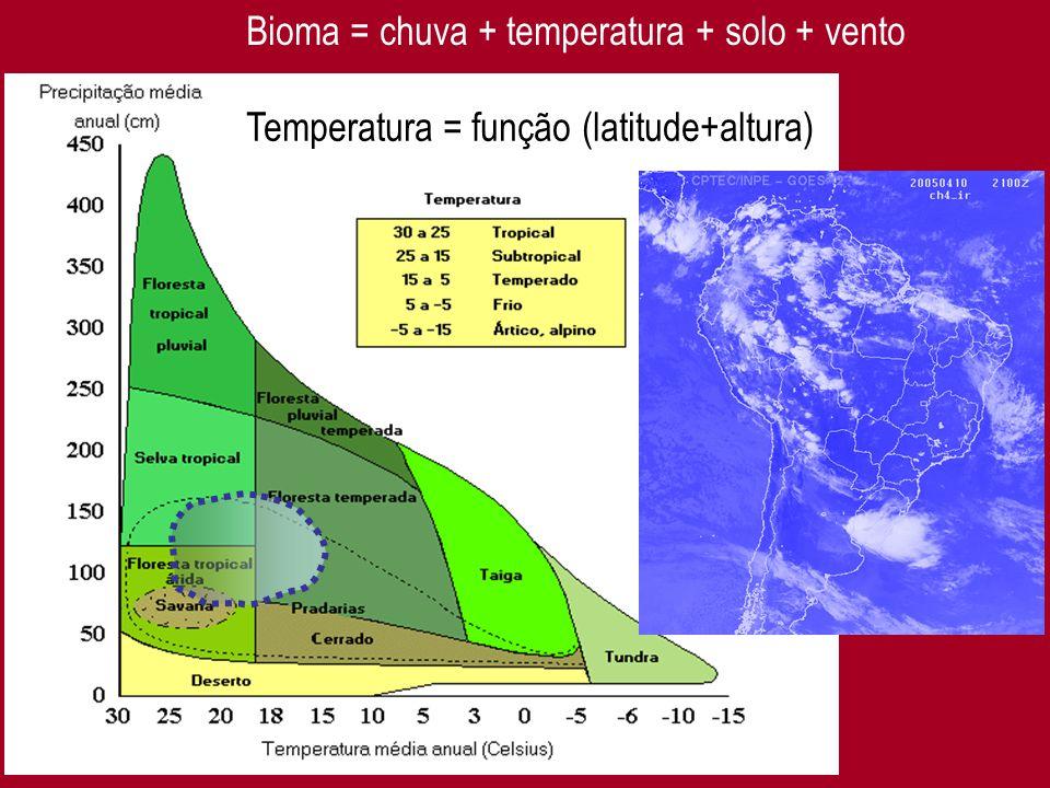Bioma = chuva + temperatura + solo + vento
