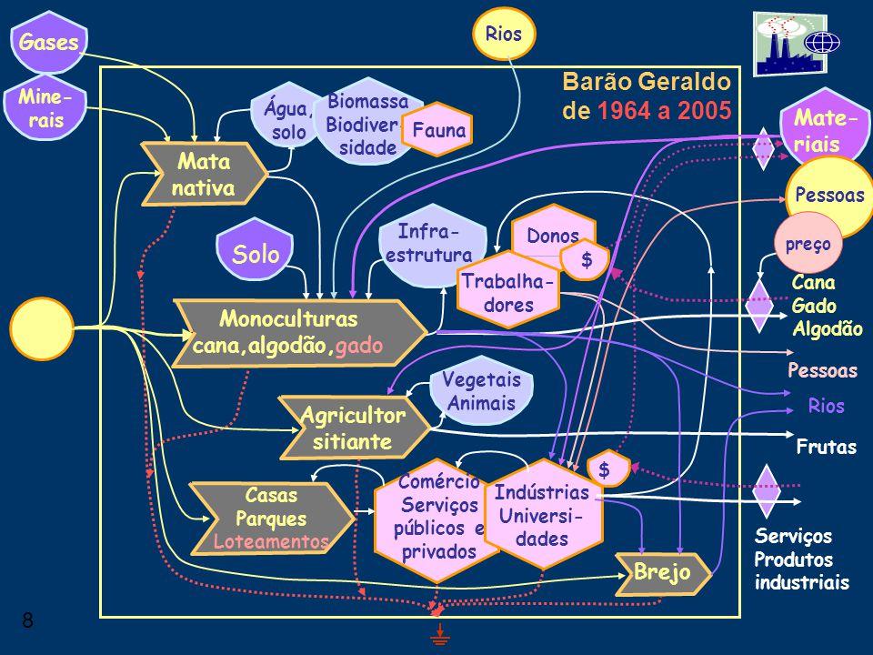 Barão Geraldo de 1964 a 2005 Solo Gases Mate-riais Mata nativa