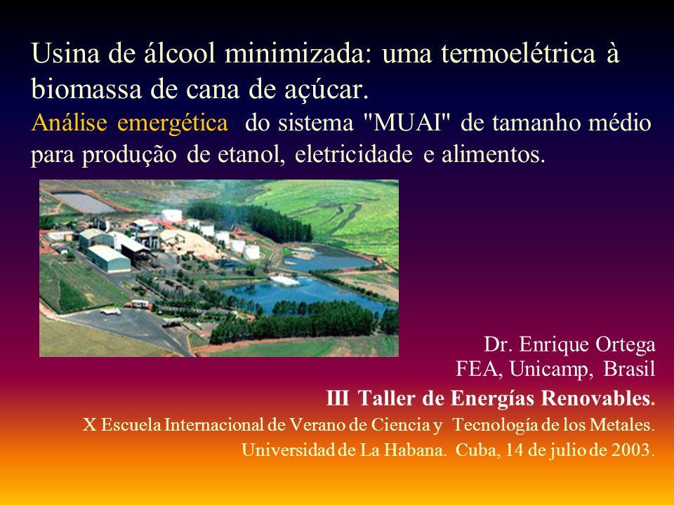 Usina de álcool minimizada: uma termoelétrica à biomassa de cana de açúcar. Análise emergética do sistema MUAI de tamanho médio para produção de etanol, eletricidade e alimentos.