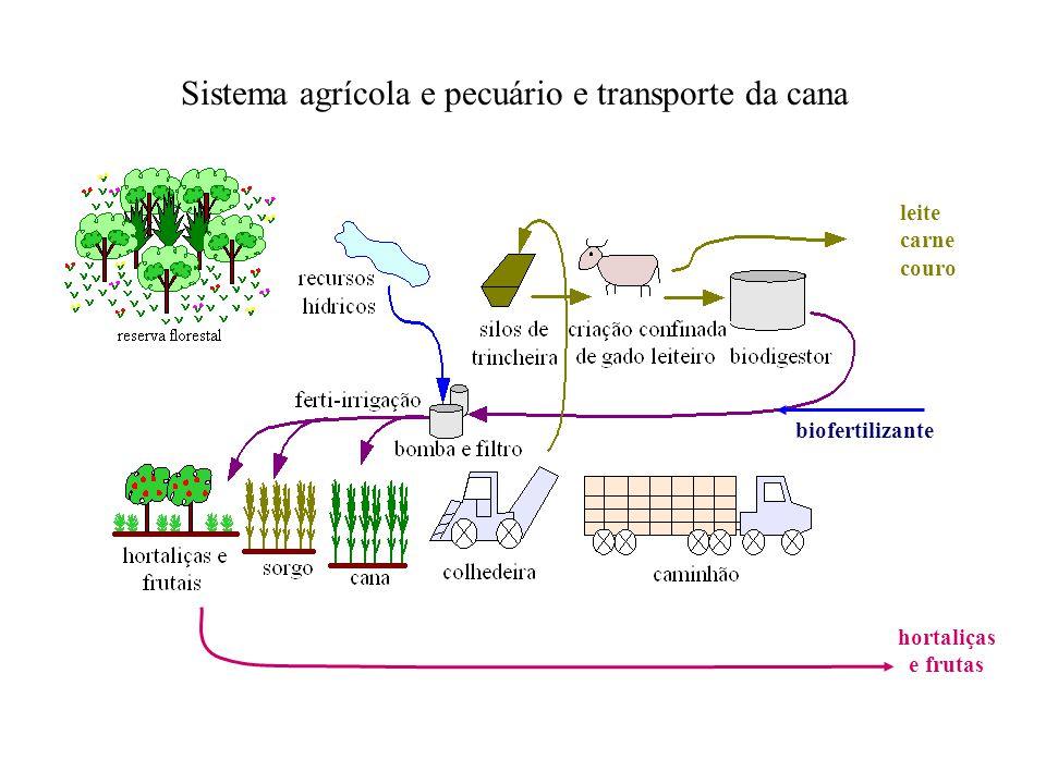 Sistema agrícola e pecuário e transporte da cana