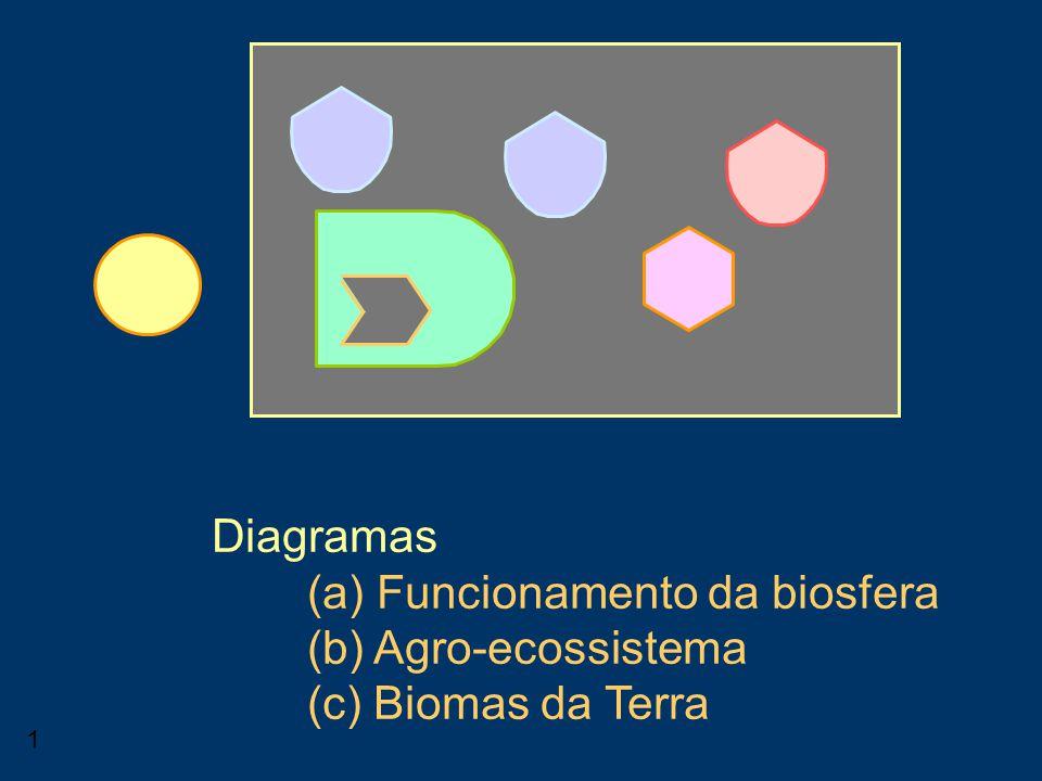 Consumidor Diagramas (a) Funcionamento da biosfera (b) Agro-ecossistema (c) Biomas da Terra