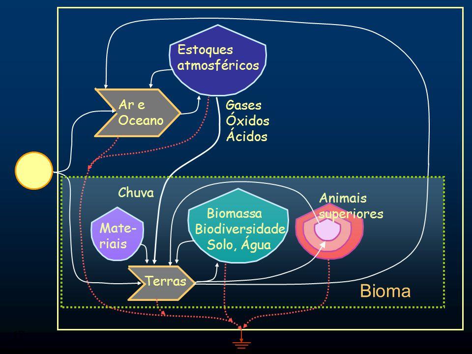 Bioma Estoques atmosféricos Ar e Oceano Gases Óxidos Ácidos Chuva