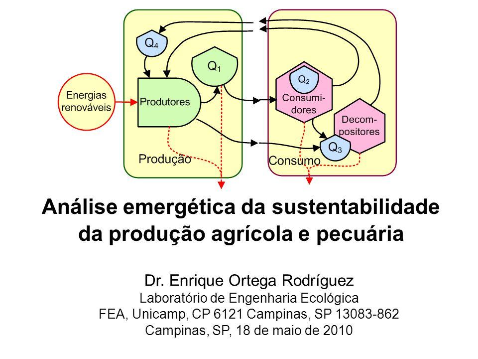 Análise emergética da sustentabilidade da produção agrícola e pecuária