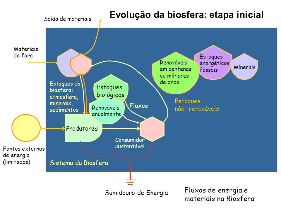Evolução da biosfera: etapa inicial