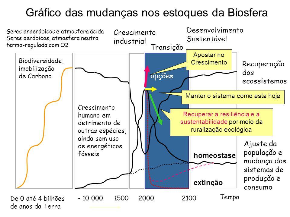 Gráfico das mudanças nos estoques da Biosfera